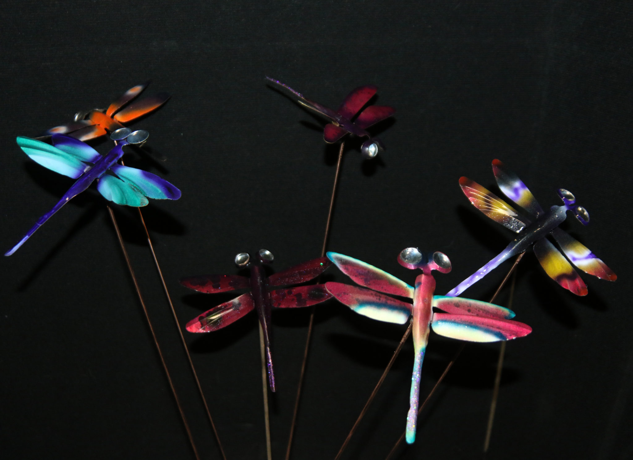 Dragonflies by Ray Berger